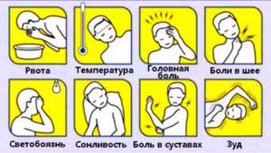 симптомы укуса клеща